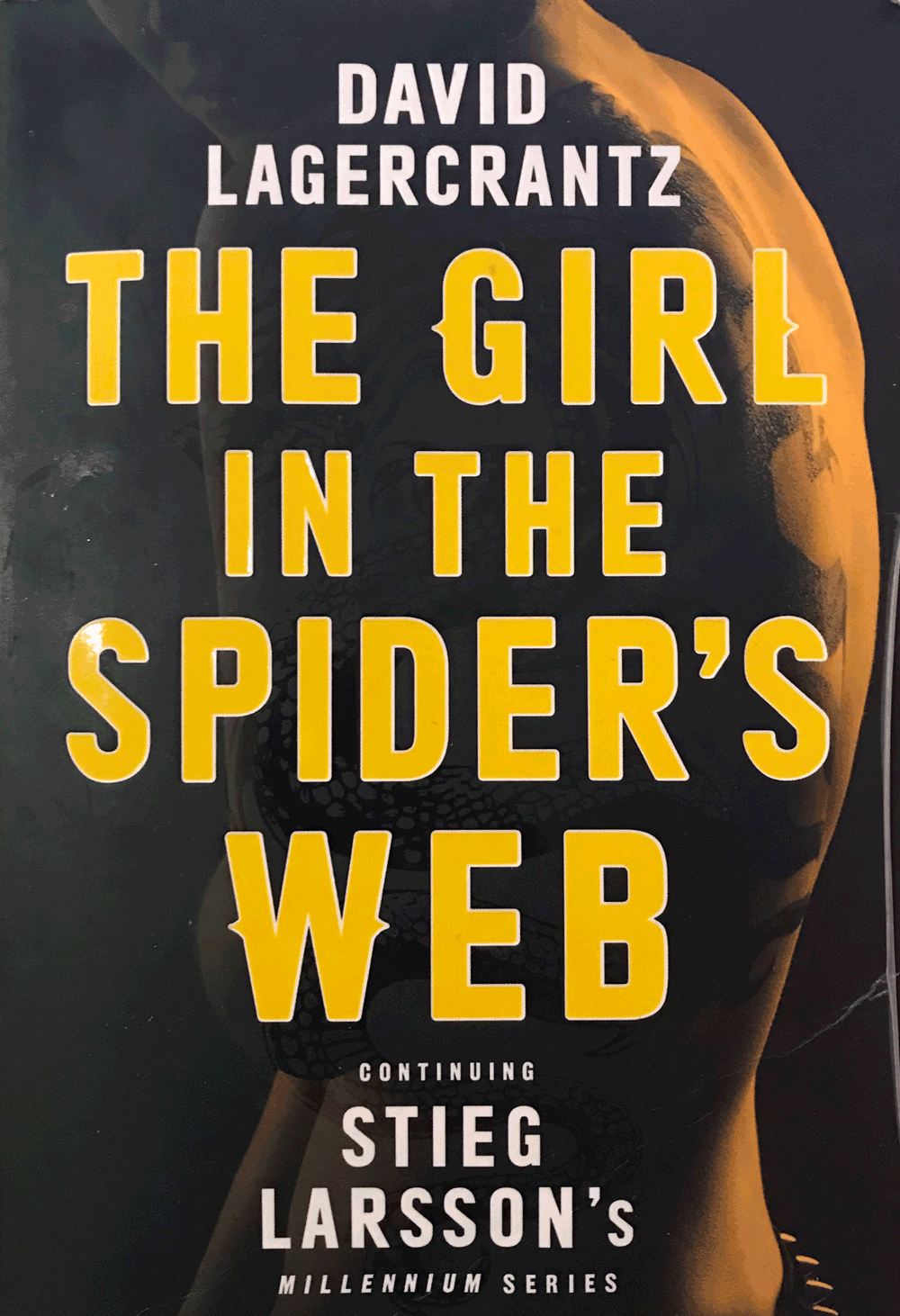 Picture of The Girl in the Spider's Web Book Cover
